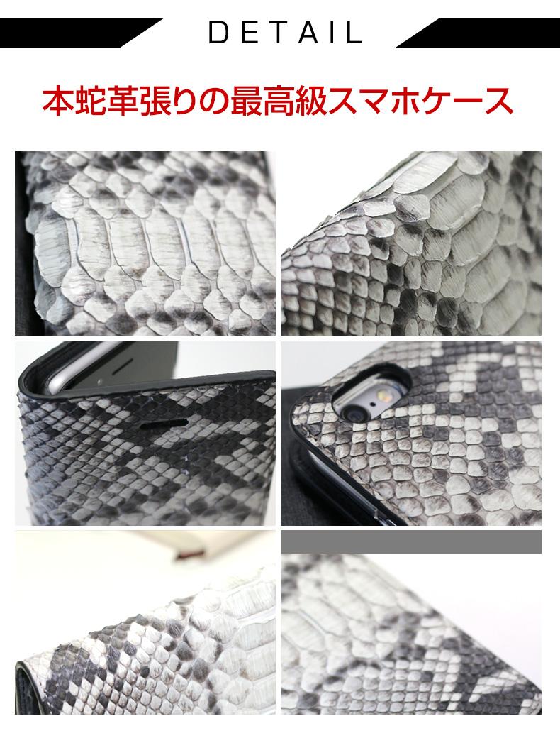 Real_Snake_Diary_03